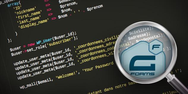 Astuces de développement Gravity Forms pour des formulaires WordPress complexes