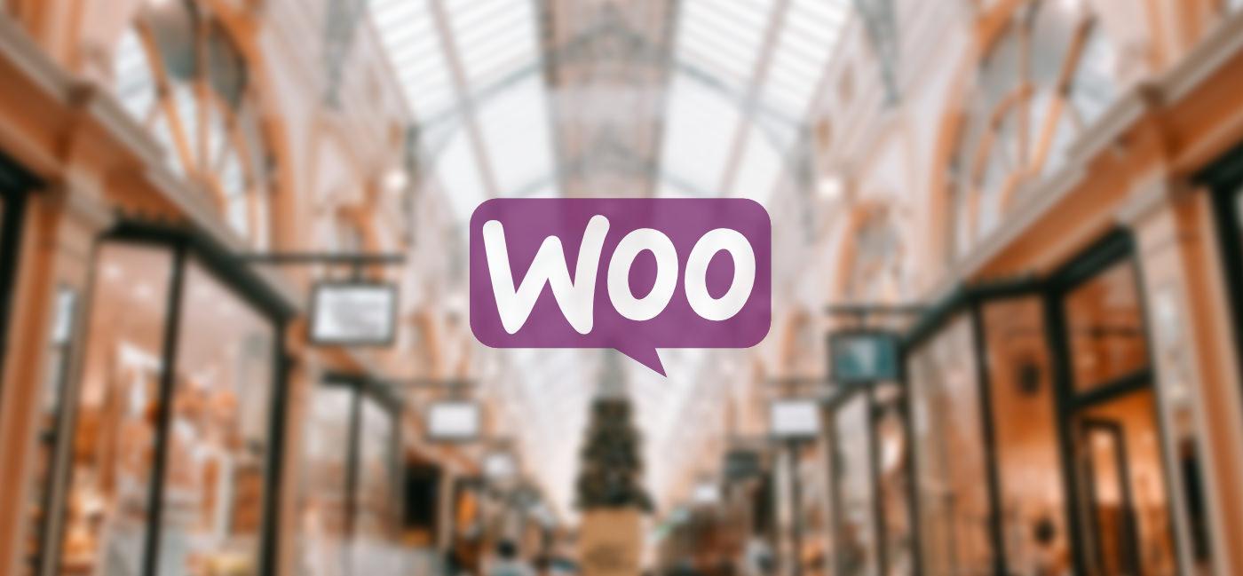 Personnalisez les champs du formulaire de commande WooCommerce