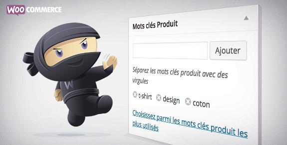 Supprimer les tags des produits WooCommerce